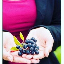 Prevent and treat Summer Flu Naturally with Aronia