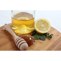 Apple Cider Vinegar Recipe: GInger Tonic